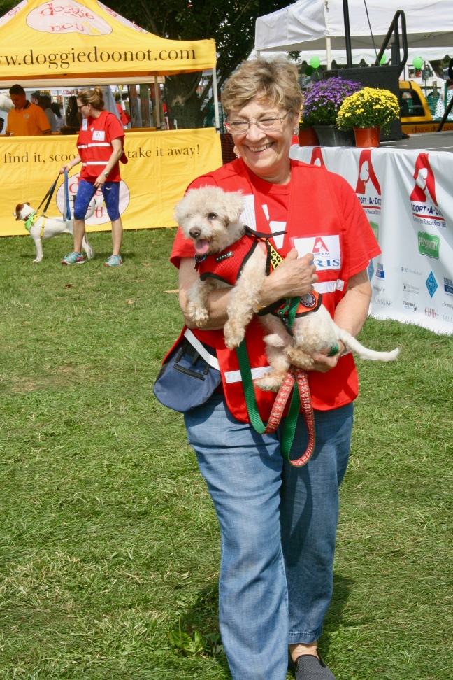 Adopt-a-Dog volunteer with her charge at Puttin' on the Dog.